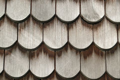 Beaver tail roof tiles Stock Images