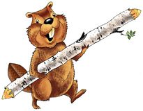 Beaver teeth rodent wool skin dam. Fur log figure Stock Photography