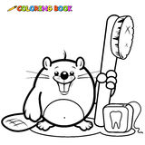 Beaver with a toothbrush and dental floss. Vector Illustration of a cute beaver smiling and holding a toothbrush and dental floss. Black and white coloring book Royalty Free Stock Photography