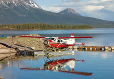 A beaver used for transport at a remote location in northern bc Stock Images