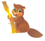 Beaver. Vector illustration  Stock Photos