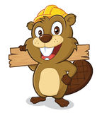 Beaver wearing a hard hat and holding a plank of w. Clipart picture of a beaver cartoon character wearing a hard hat and holding a plank of wood Stock Photography