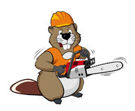 Beaver wearing a helmet and holding a chain saw
