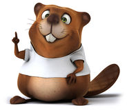 Beaver with a white tshirt Royalty Free Stock Images