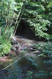 Beaver& x27;s lodge, beaver, beaver dam, dam Lauter  in Alsace, France Royalty Free Stock Photography
