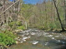 Beaverdam Creek at Backbone Rock. Beaverdam Creek runs through Backbone Rock Recreation Area in Shady Valley, Tennessee, near Damascus, Virginia Stock Photos