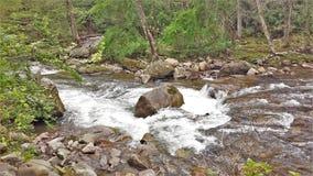Beaverdam Creek at Backbone Rock. Beaverdam Creek runs through Backbone Rock Recreation Area in Shady Valley, Tennessee, near Damascus, Virginia Stock Images