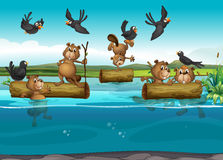 Beavers and birds in the river. Illustration stock illustration