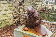 The symbol of Canada - a bronze statue of a beaver stands in a park of the city of Fergus Canada. Beavers very often appear on political drawings, caricatures stock image