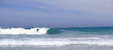 Beavh Brandung und Surfer Stockfotografie