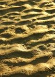 Beavh sand texture Royalty Free Stock Image