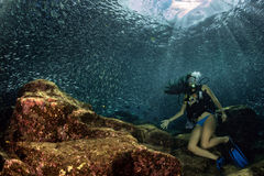 Beaytiful Latina Diver Inside a school of fish Royalty Free Stock Photo