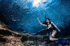 Beaytiful Latina Diver Inside a school of fish Royalty Free Stock Images