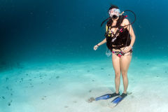 Beaytiful Latina Diver standing on sand Royalty Free Stock Image