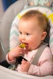 Bebé adorable que come una salmuera por primera vez Imagen de archivo libre de regalías