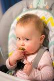 Bebé adorable que come una salmuera por primera vez Fotos de archivo