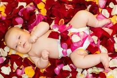 Bebé adorable que miente en el pétalo de rosas fotos de archivo libres de regalías