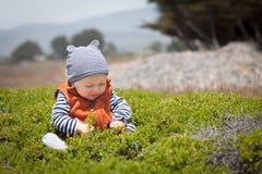 Bebé adorable que se sienta en arbustos verdes Fotos de archivo