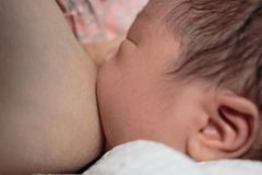 Bebé asiático que chupa en su mother& x27; pecho de s foto de archivo libre de regalías