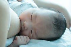 Bebé asiático que chupa en su mother& x27; pecho de s fotografía de archivo libre de regalías