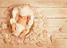 Bebé Autumn Wood durmiente, niño recién nacido, recién nacido dormido Foto de archivo