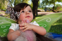 Bebé com asas Fotos de Stock