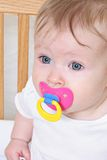 Bebé con el pacificador o el maniquí Imagen de archivo libre de regalías
