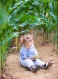 Bebé con el pelo rizado en el campo que juega con maíz foto de archivo