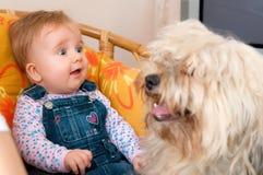 Bebé con el perro de animal doméstico