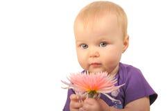 Bebé con la flor Fotos de archivo