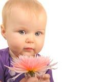 Bebé con la flor Imágenes de archivo libres de regalías