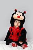 Bebé con un traje del ladybug Imagen de archivo libre de regalías