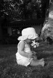 Bebé con una margarita   foto de archivo