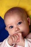 Bebé curioso Foto de archivo