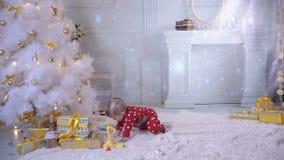 bebé de 1 año cerca del árbol de navidad, comiendo el panecillo metrajes