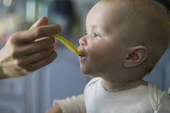 Bebé de alimentación de la cuchara Foto de archivo