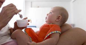 Bebé de alimentación de la madre de la cosecha almacen de video