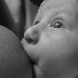 Bebé de amamantamiento - monocromo Fotografía de archivo libre de regalías