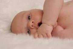 Bebé 2 de la manta de la piel del oso fotografía de archivo