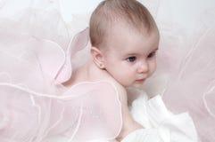 Bebé de la mariposa Imágenes de archivo libres de regalías