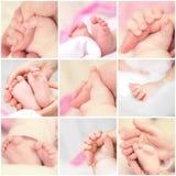 Bebé de los pies y de las manos Fotografía de archivo