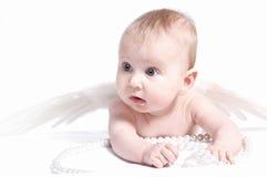 Bebé del ángel Fotos de archivo