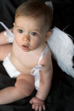 Bebé del ángel Fotos de archivo libres de regalías