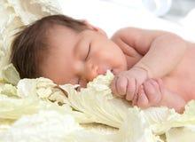 Bebé del niño del niño recién nacido que miente y que duerme en la col le Fotos de archivo