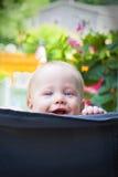 Bebé del peekaboo Foto de archivo