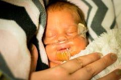 Bebé del prematuro que duerme en la incubadora Fotos de archivo