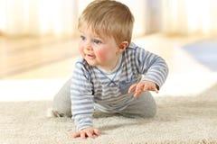 Bebé distraído que se arrastra en una alfombra en casa imagen de archivo