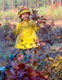 Bebé divertido que permanece en la acción de madera en bosque otoñal Fotos de archivo
