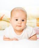 Bebé do retrato Imagens de Stock Royalty Free