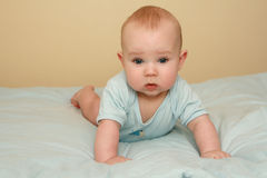 Bebé doce Foto de Stock Royalty Free